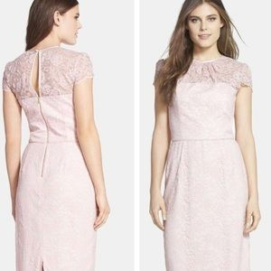 Maggy London Summer Midi Dress in Pink Lace